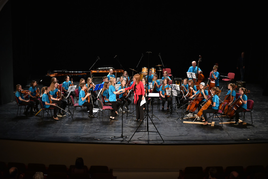 Glasbena šola Ribnica Dirigentka: Ksenija Abramovič Grom